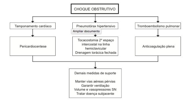 Fonte: FELICE et al. Revista da AMRIGS, Porto Alegre, 55 (2): 179-196, abr.-jun. 2011